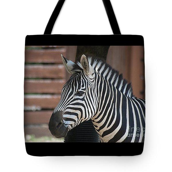 Zebra 20120718_150a Tote Bag