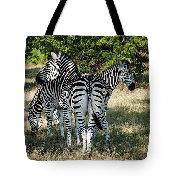 Three Zebras Tote Bag