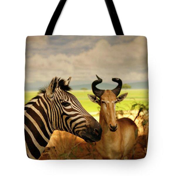 Zebra And Antelope Tote Bag by Marilyn Hunt