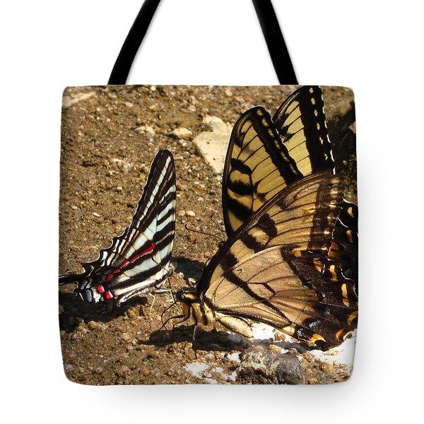 Zebra And Tigers Tote Bag