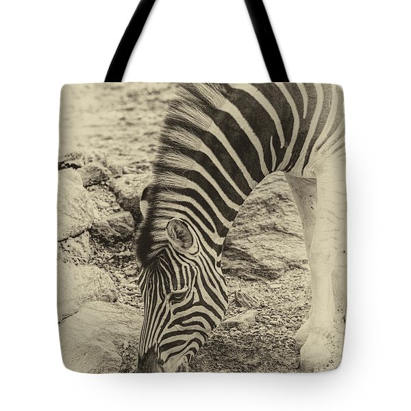 Tote Bag featuring the photograph Zebra Ap by Phil Abrams