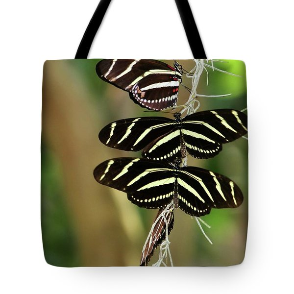 Zebra Butterflies Hanging On Tote Bag by Sabrina L Ryan