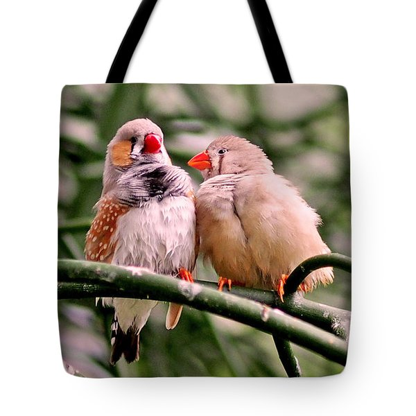 Tote Bag featuring the photograph Zebra Finch Colloquy by Rona Black