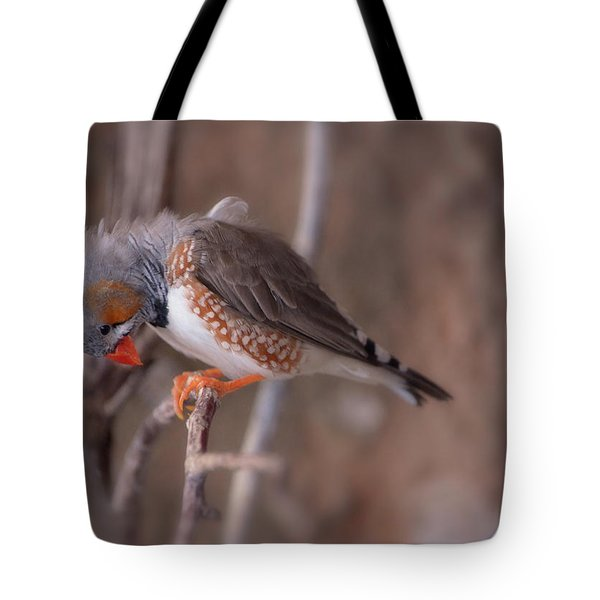Zebra Finch On A Branch Tote Bag