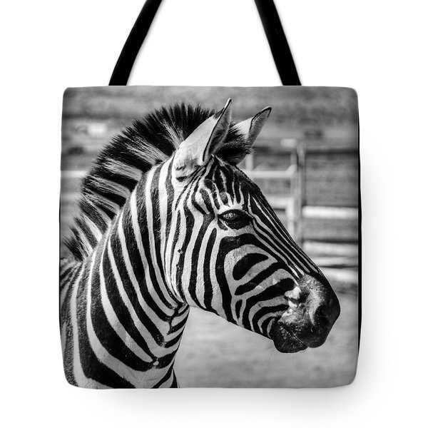 Tote Bag featuring the photograph Zebra by Geraldine Alexander
