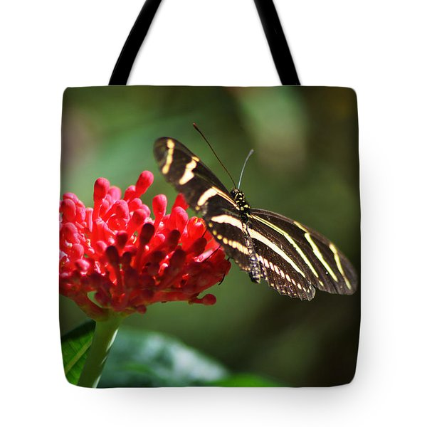 Tote Bag featuring the pyrography Zebra Heliconia Butterfly by Sally Sperry