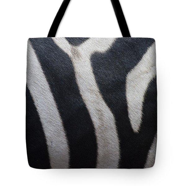 Zebra Tote Bag by Linda Geiger
