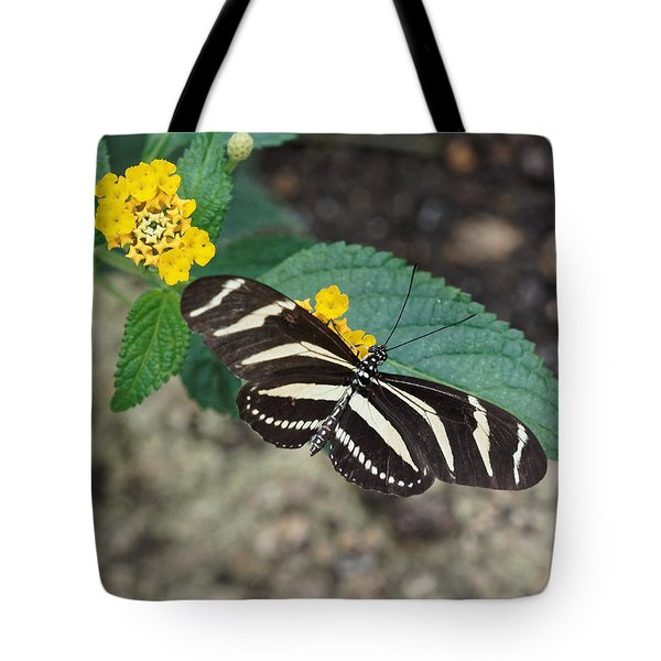 Tote Bag featuring the photograph Zebra Longwing Butterfly - 1 by Paul Gulliver