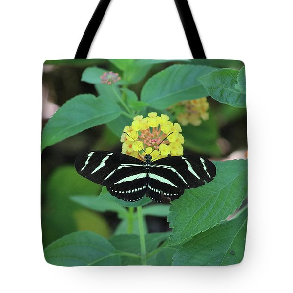 Zebra Longwing Butterfly Heliconius Charitonia Tote Bag