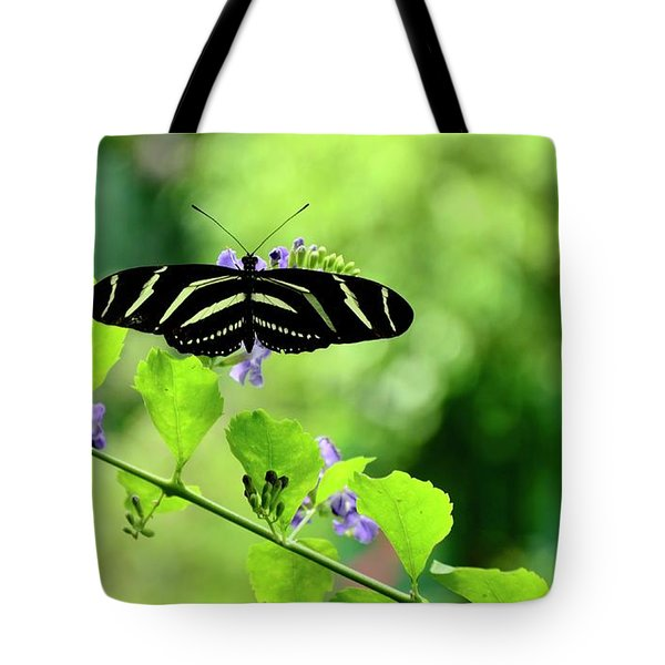 Tote Bag featuring the photograph Zebra Longwing Butterfly by Corinne Rhode