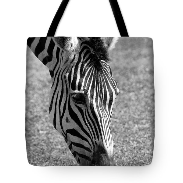Tote Bag featuring the photograph Zebra Portrait by Sabrina L Ryan