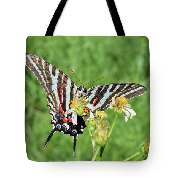 Zebra Swallowtail And Ladybug Tote Bag