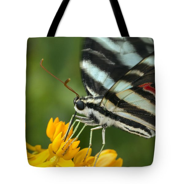 Zebra Swallowtail Drinking On The Fly Tote Bag