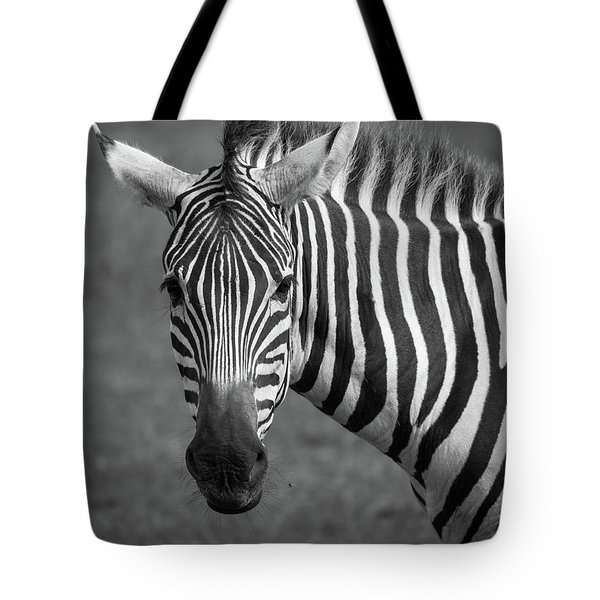 Zebra Tote Bag by Trace Kittrell