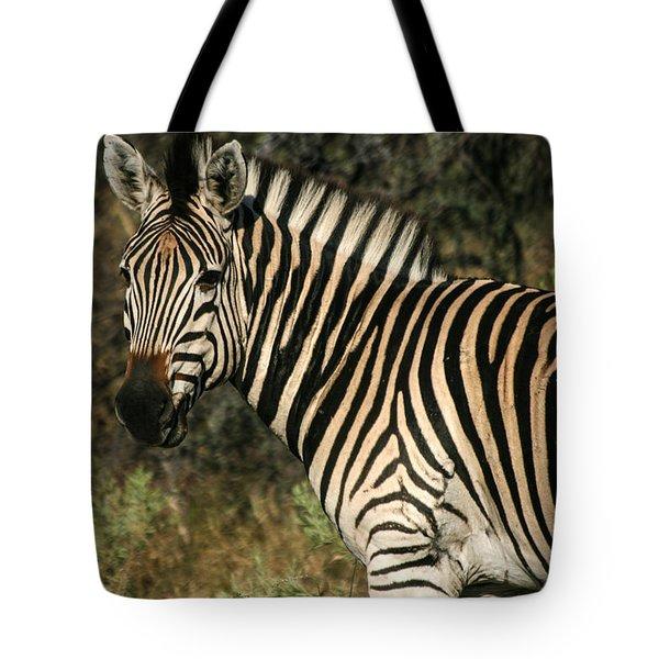 Zebra Watching Tote Bag