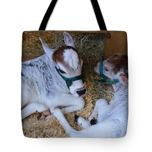 Zebu Calves Tote Bag by Warren Thompson