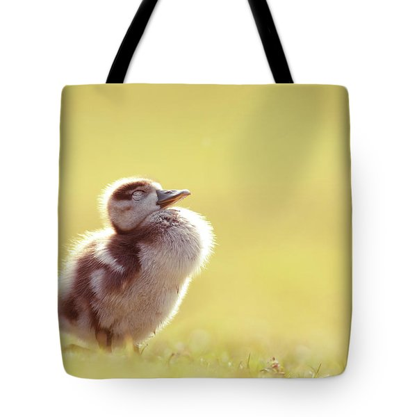 Zen Bird - Gosling Enjoying The Sun Light Tote Bag