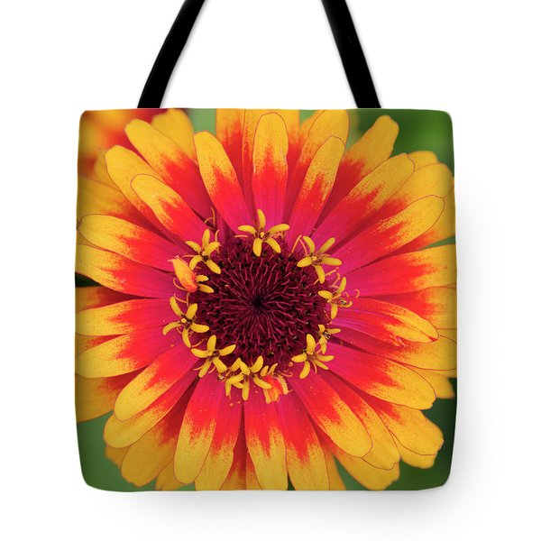 Tote Bag featuring the photograph Zinnia Elegans Zowie Yellow Flame Flower  by Tim Gainey