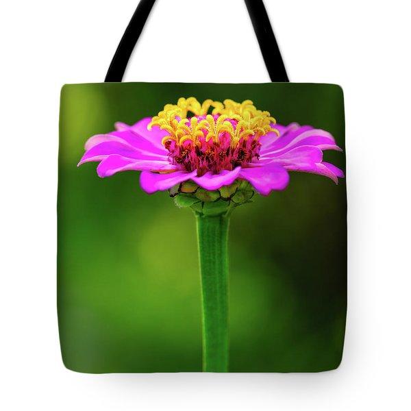 Zinnia Tote Bag