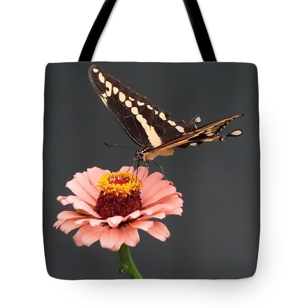 Zinnia With Butterfly 2702 Tote Bag