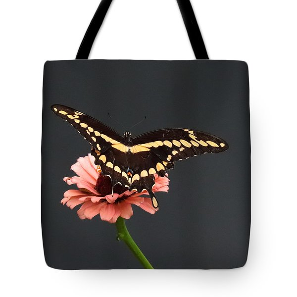 Zinnia With Butterfly 2708  Tote Bag