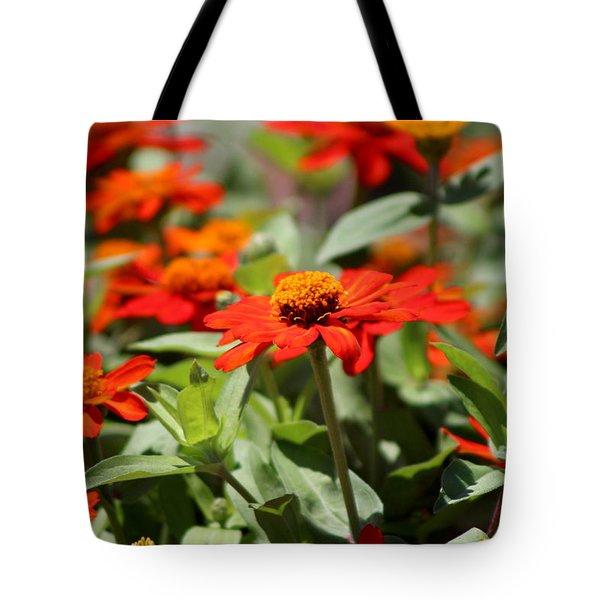Zinnias In Autumn Colors Tote Bag