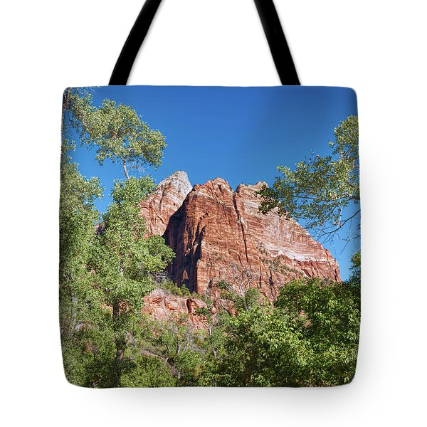 Tote Bag featuring the photograph Zion Contrasts by John M Bailey