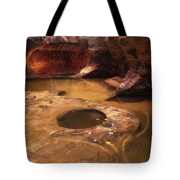 Zion  Tote Bag by Dustin LeFevre