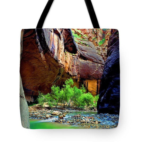 Zion Narrows #2 Tote Bag