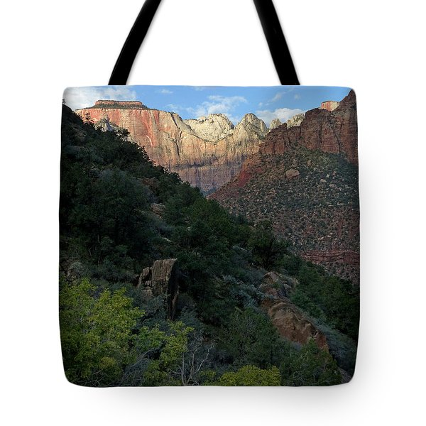Zion National Park 20 Tote Bag by Jeff Brunton