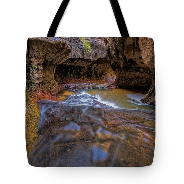 Tote Bag featuring the photograph Zion Subway by Jonathan Davison