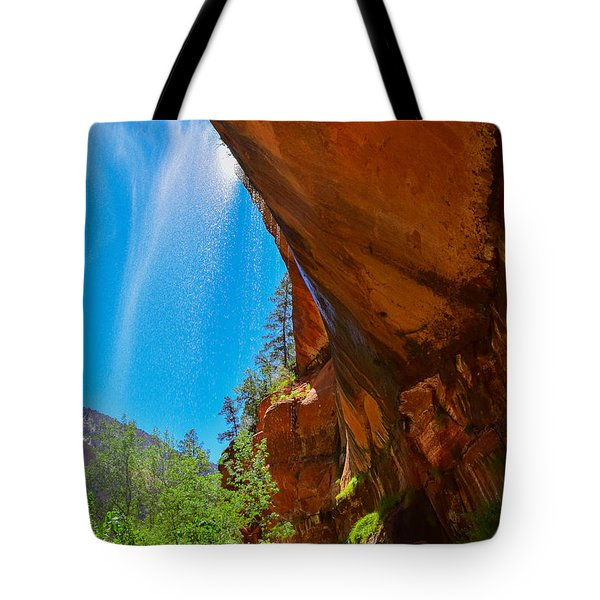 Tote Bag featuring the photograph Zion - Under The Falls by Dany Lison