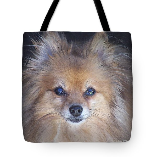 Zoom Tote Bag by Brian  Commerford
