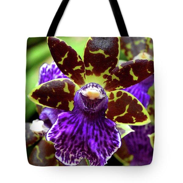 Zygopetalum Orchid Tote Bag
