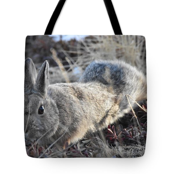 Tote Bag featuring the photograph 02-27-18 Rabbit by Margarethe Binkley