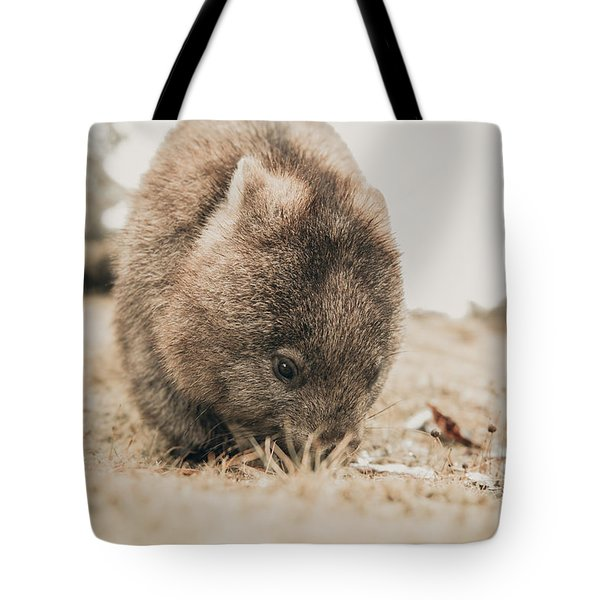 Tote Bag featuring the photograph Adorable Large Wombat During The Day Looking For Grass To Eat by Rob D Imagery