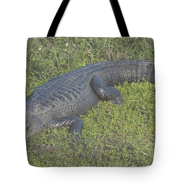 Tote Bag featuring the photograph Alligator by Michael D Miller