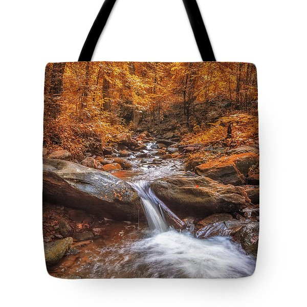 Tote Bag featuring the photograph Amicalola Falls by Bernd Laeschke