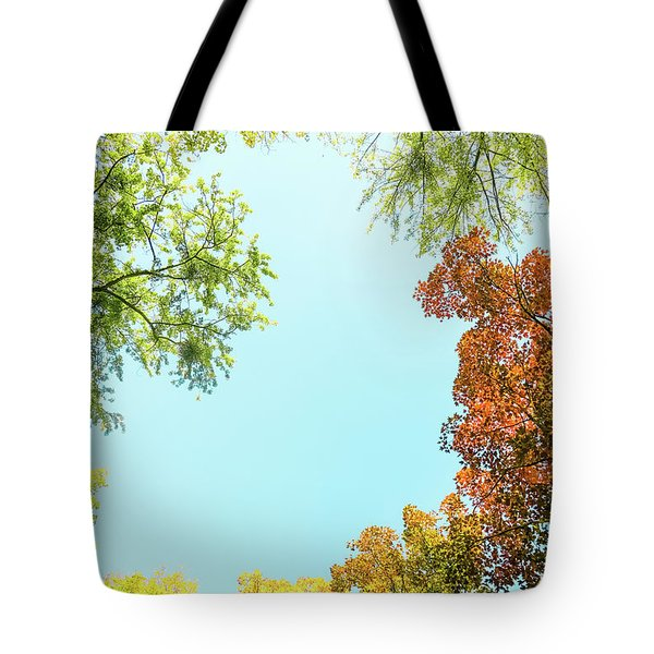 Tote Bag featuring the photograph Autumn Beauty I by Anne Leven