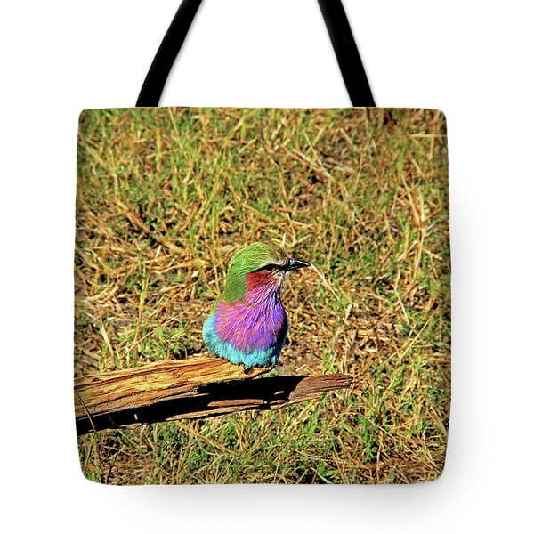 Bird - Lilac-breasted Roller Tote Bag