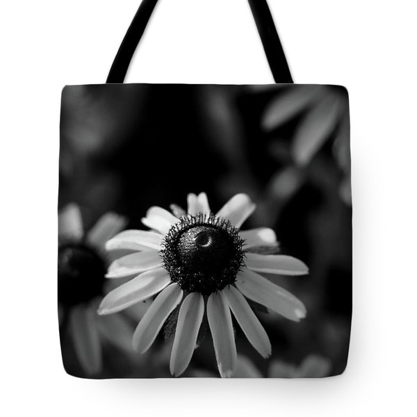 Tote Bag featuring the photograph Black-eyed Susan  by Jeff Phillippi