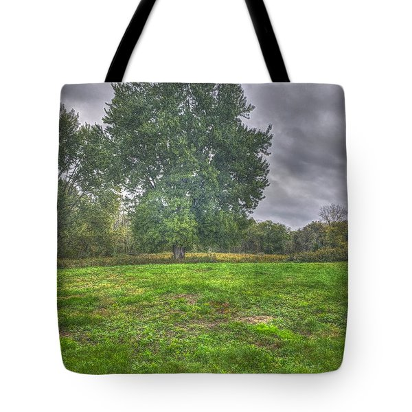 Blacklick Circle Earthwork Tote Bag