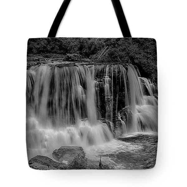 Blackwater Falls Mono 1309 Tote Bag