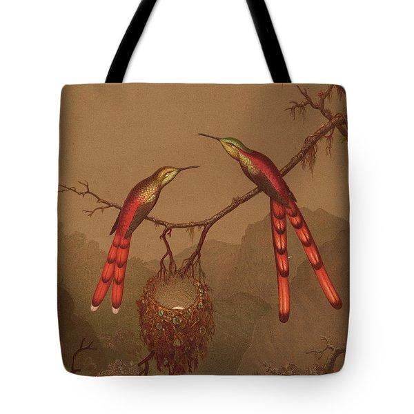 Brazilian Hummingbirds Tote Bag