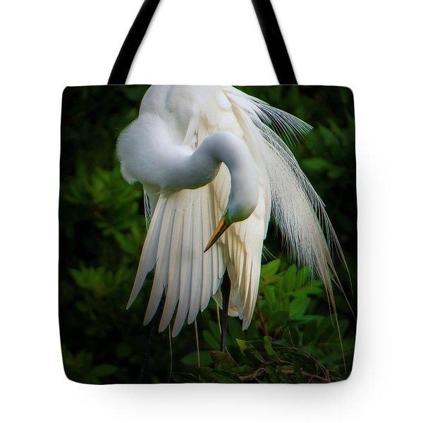 Breeding Plumage And Color Tote Bag