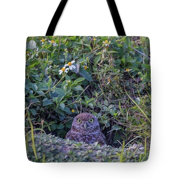 Tote Bag featuring the photograph Burrowing Owl by Paul Schultz