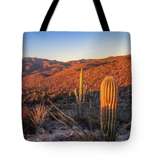 Tote Bag featuring the photograph Cactus Hills Sunset by Lon Dittrick
