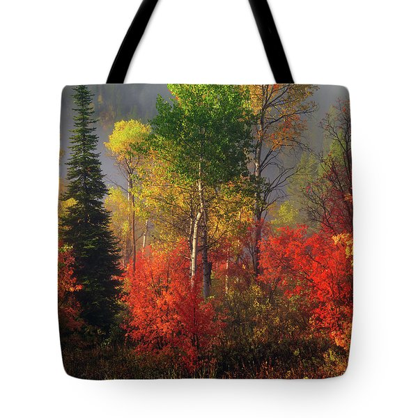 Tote Bag featuring the photograph Color And Light by Leland D Howard