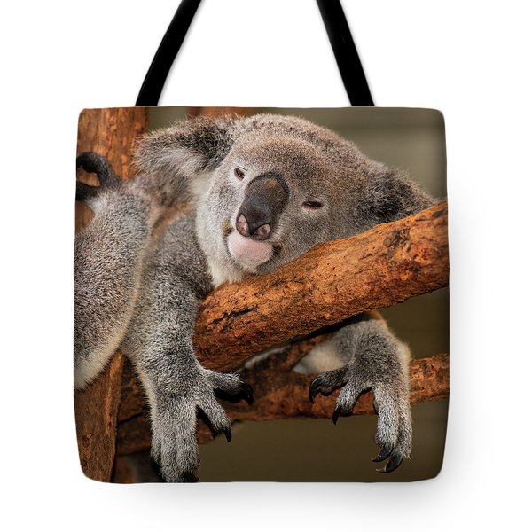 Cute Australian Koala Resting During The Day. Tote Bag