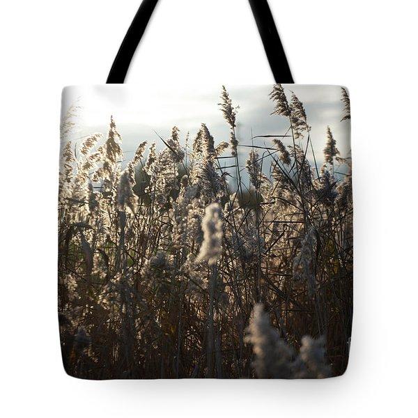 Fine Art Nature Tote Bag